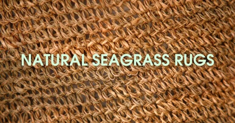 Best Seagrass Rugs